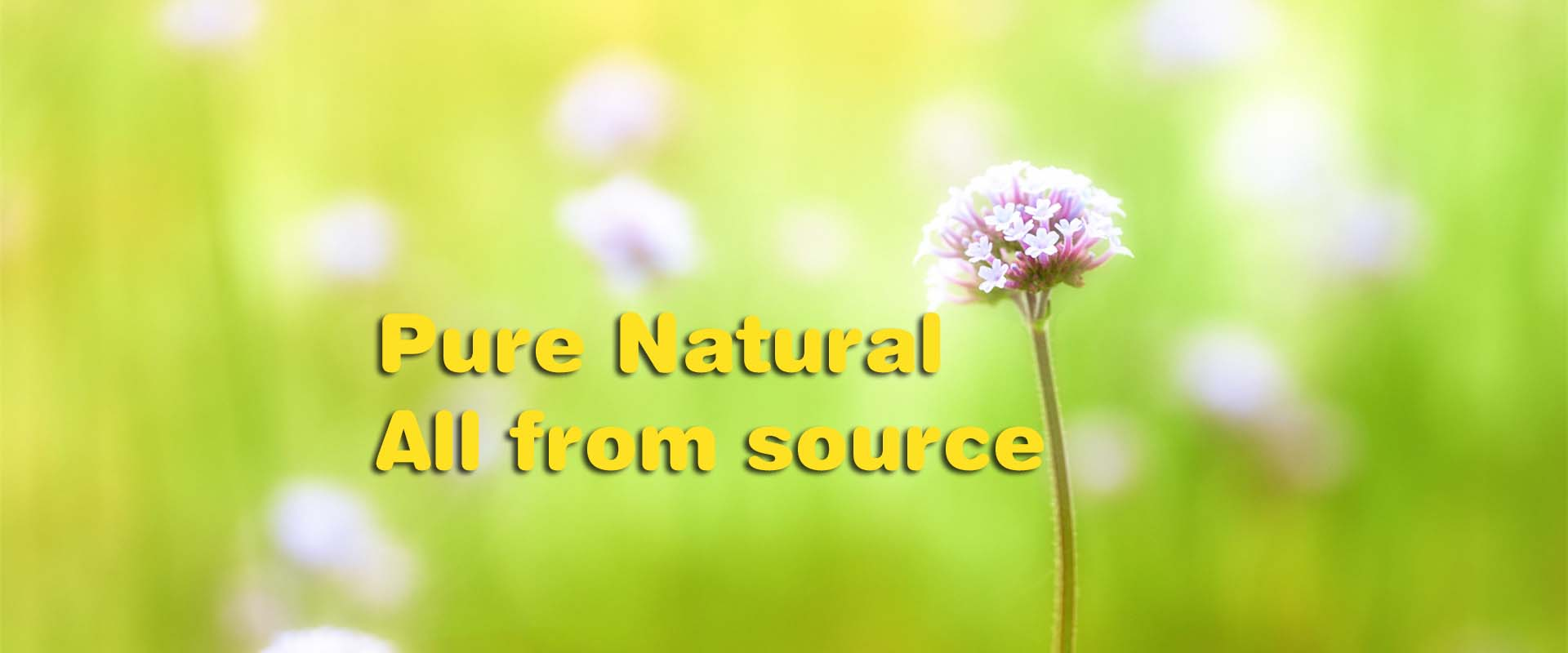 pure natural all from source