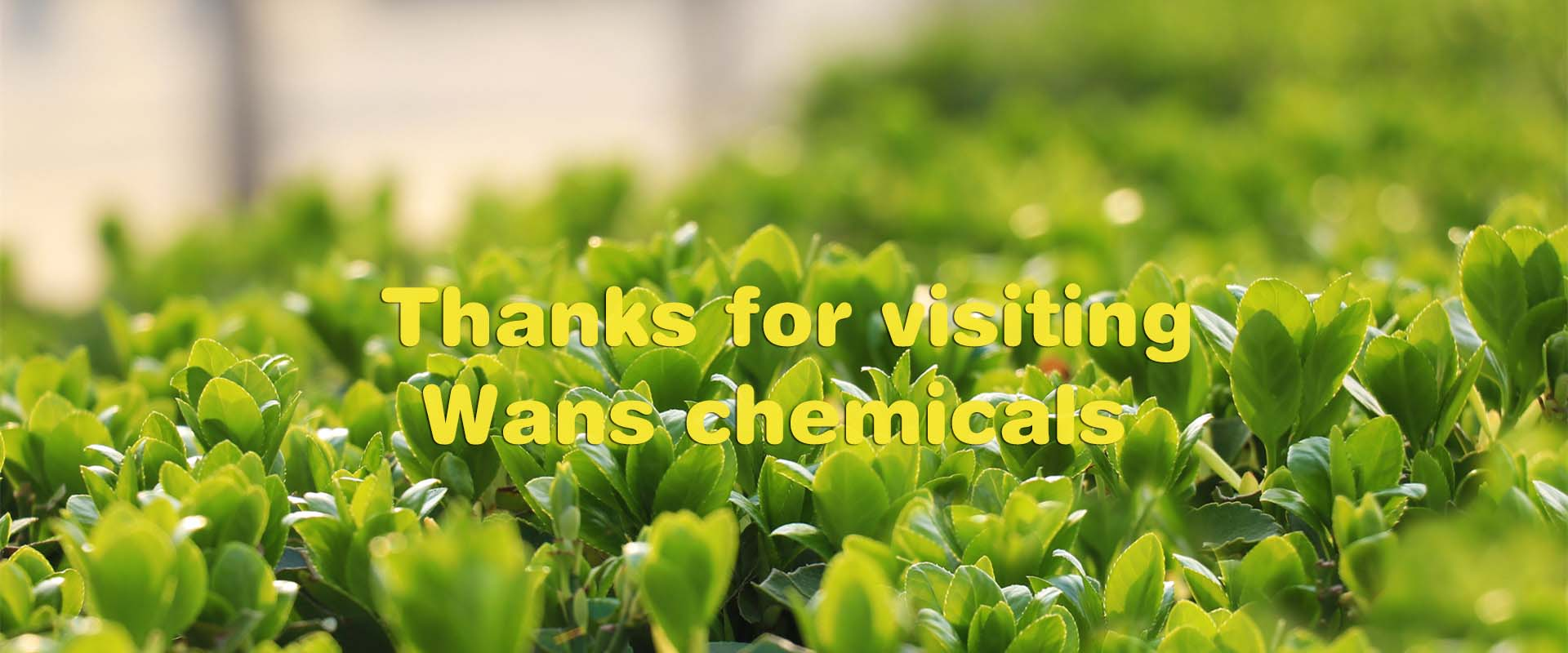 tanks for visiting wanschemicals
