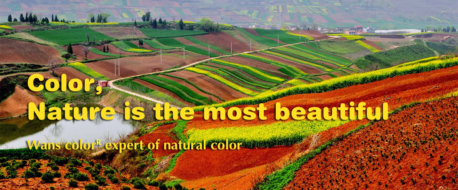 color natural is the best beautiful